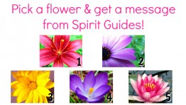 Free Reading: Pick a flower & Get a Message