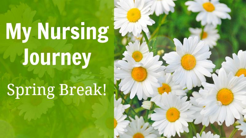 My nursing journey spring break 2