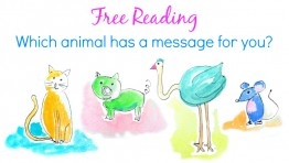 Free Reading: Which animal has a message for you?