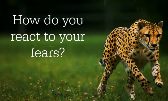 How do you react to your fears?