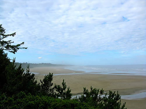 Beach in Newport, Oregon