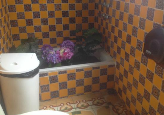 bathroom fake plants real soil 550