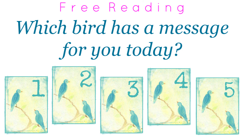Free Reading - Which bird has a message for you today - by Melanie The Medium