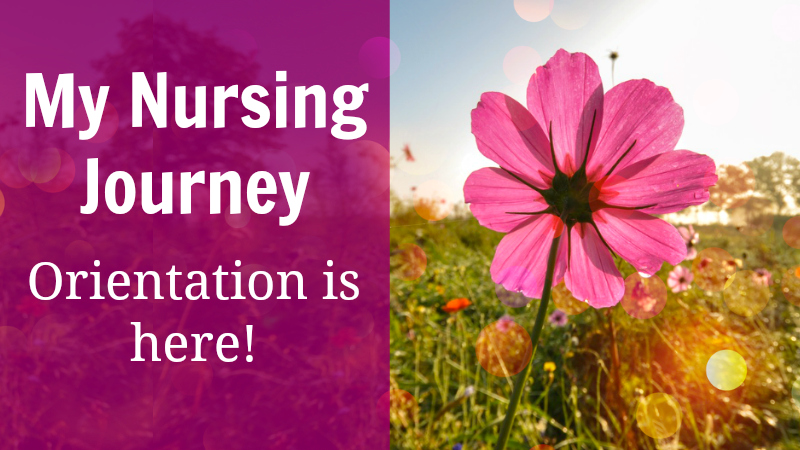 my-nursing-journey-orientation-is-here